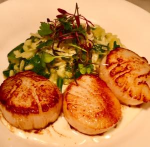 Scallops on a plate at Newton's inside The Heritage Downtown
